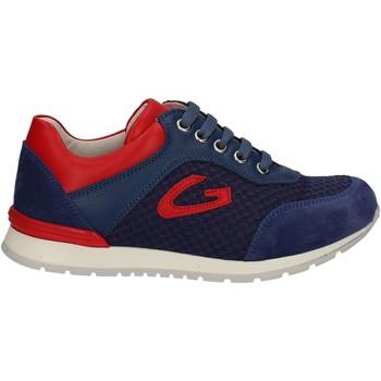 Scarpe Unisex bambino Sneakers basse Alberto Guardiani GK23301 Blu
