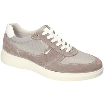 Scarpe Uomo Sneakers basse IgI&CO 3120122 Altri