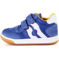 Scarpe Unisex bambino Sneakers basse Falcotto 2014156 01 Blu