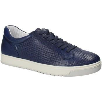 Scarpe Uomo Sneakers basse IgI&CO 1125 Blu