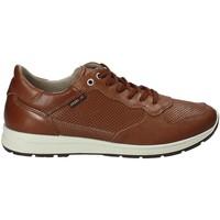 Scarpe Uomo Sneakers basse Enval 1211422 Marrone