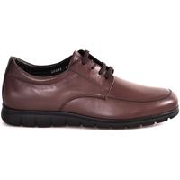 Scarpe Uomo Sneakers basse Soldini 20583 P Marrone