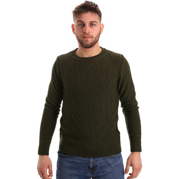 Abbigliamento Uomo Maglioni Bradano 155 Verde
