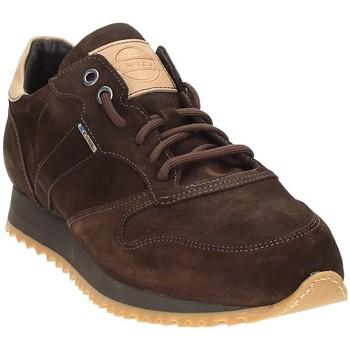 Scarpe Uomo Sneakers basse Exton 777 Marrone