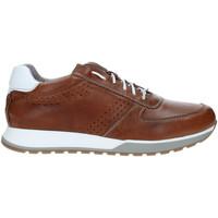 Scarpe Uomo Sneakers basse Rogers 5065 Marrone