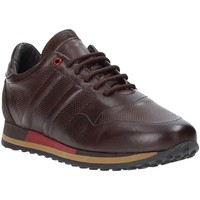 Scarpe Uomo Sneakers basse Exton 246 Marrone