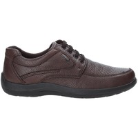 Scarpe Uomo Sneakers basse Enval 4233511 Marrone