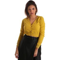 Abbigliamento Donna Gilet / Cardigan Fracomina FR19FM823 Giallo