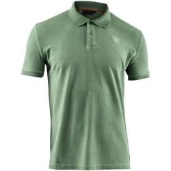 Abbigliamento Uomo Polo maniche corte Lumberjack CM45940 007 516 Verde