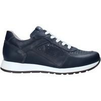 Scarpe Unisex bambino Sneakers basse Nero Giardini E033810M Blu