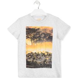 Abbigliamento Unisex bambino T-shirt maniche corte Losan 013-1017AL Bianco