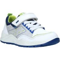Scarpe Unisex bambino Sneakers basse Primigi 5381500 Bianco