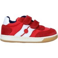 Scarpe Unisex bambino Sneakers basse Falcotto 2014666 01 Rosso