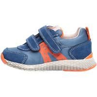 Scarpe Unisex bambino Sneakers basse Naturino 2014902 01 Blu