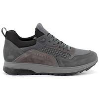 Scarpe Uomo Sneakers basse IgI&CO SNEAKER  - 6139011 Grigio