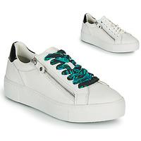 Scarpe Donna Sneakers basse Tamaris MILANIA Bianco