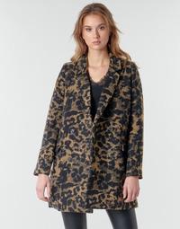 Abbigliamento Donna Giubbotti Deeluxe LEA Marrone / Nero