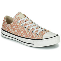 Scarpe Donna Sneakers basse Converse CHUCK TAYLOR ALL STAR CANVAS BRODERIE OX Beige