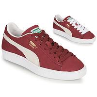 Scarpe Sneakers basse Puma SUEDE Bordeaux