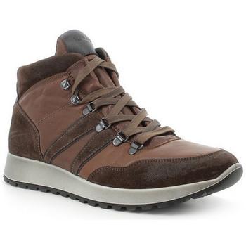 Scarpe Uomo Sneakers alte IgI&CO SCARPONCINO  - 6137522 TERRA Marrone