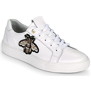 Scarpe Donna Sneakers basse Myma PIGGA Bianco
