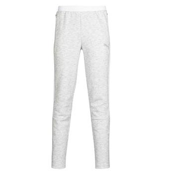 Abbigliamento Uomo Pantaloni da tuta Puma Evostripe pant Grigio / Clair