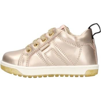 Scarpe Bambino Sneakers basse Balducci - Polacchino oro CSP4105 ORO