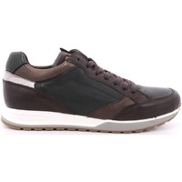 Scarpe Uomo Sneakers basse Payo 47 - 3060 Marrone