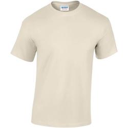 Abbigliamento Uomo T-shirt maniche corte Gildan GD05 Beige