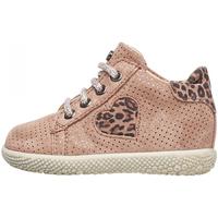 Scarpe Bambina Sneakers alte Falcotto - Polacchino rosa CARYB-1M36 ROSA