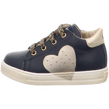 Scarpe Bambina Sneakers basse Falcotto - Polacchino blu HEART-2C09 BLU