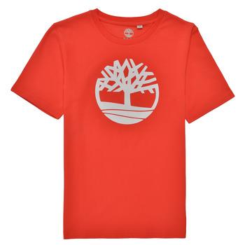 Abbigliamento Bambino T-shirt maniche corte Timberland LOLLA Rosso