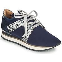 Scarpe Donna Sneakers basse Adige XAN V4 KOI SILVER Blu