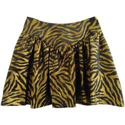Abbigliamento Donna Gonne Mariuccia 4018 Multicolore