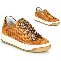 Scarpe Donna Sneakers basse IgI&CO SHOUHAI Ocre