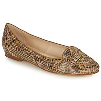 Scarpe Donna Ballerine Betty London OVINOU Taupe