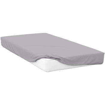 Casa Federa cuscino, testata Belledorm Double BM289 Platino