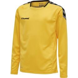 Abbigliamento Unisex bambino T-shirts a maniche lunghe Hummel Maillot  enfant manches longues Authentic HML jaune/noir