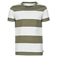Abbigliamento Uomo T-shirt maniche corte Esprit T-SHIRTS Kaki