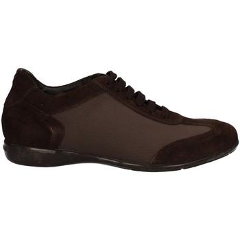 Scarpe Uomo Sneakers basse Campanile X58 MARRONE
