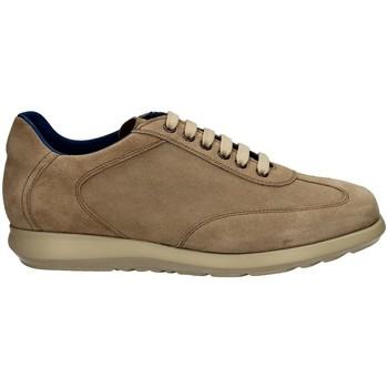 Scarpe Uomo Sneakers basse Campanile X127 DAINO