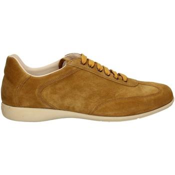 Scarpe Uomo Sneakers basse Campanile X127 NOCE