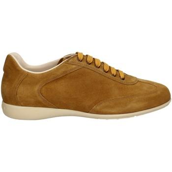 Scarpe Uomo Sneakers basse Campanile X127 MIELE