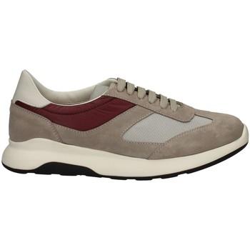 Scarpe Uomo Sneakers basse Campanile X114 GRIGIO