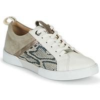 Scarpe Bambina Sneakers basse JB Martin GELATO Grigio / Bianco