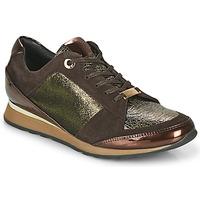 Scarpe Donna Sneakers basse JB Martin VILNES Ebano