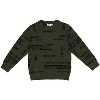 Abbigliamento Unisex bambino Felpe Melby 40B2032 Verde