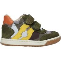 Scarpe Bambino Sneakers alte Falcotto 2015271 02 Verde