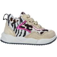 Scarpe Unisex bambino Sneakers Falcotto 2015423 02 Oro