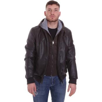 Abbigliamento Uomo Giubbotti Roberto Cavalli FST407 Marrone